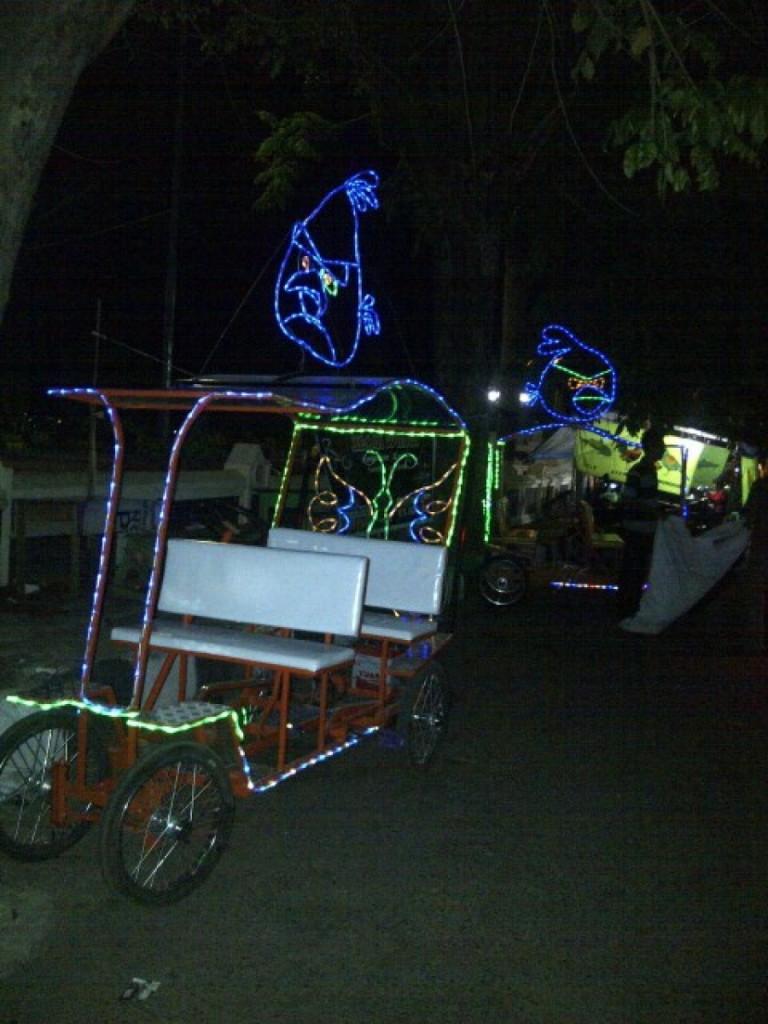 Sepeda Wisata di Taman Kota Sumber