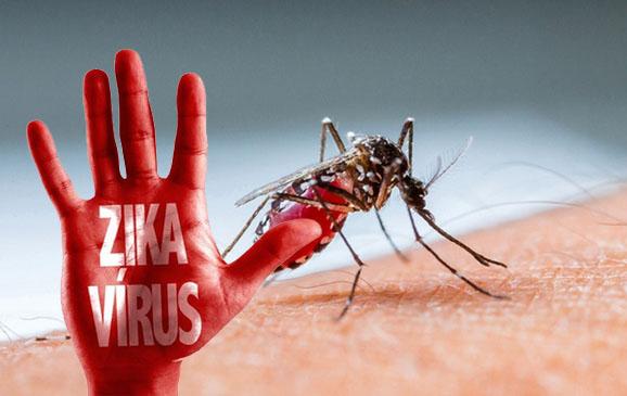 Jabar Waspada Virus Zika, Ini Antisipasinya