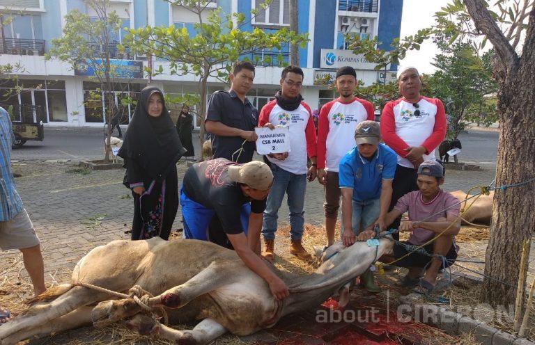 CSB Mall dan Masjid Al-Zaitun Bagikan 500 Paket Daging Kurban
