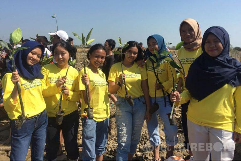 Cirebon Go Green dan Komunitas Youth Action Tanam 1000 Mangrove untuk Negeri