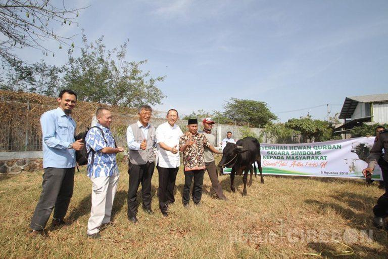 Cirebon Power Bagikan 60 Hewan Kurban Untuk Masyarakat