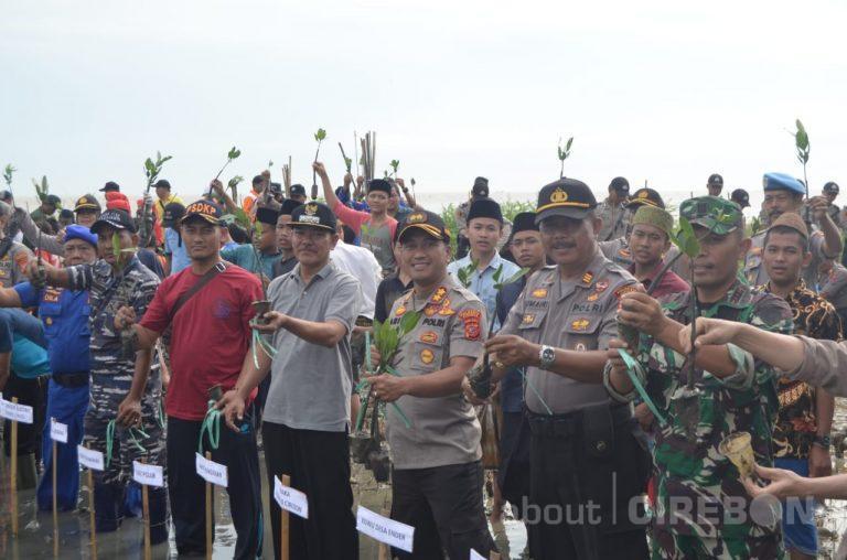 Peduli Penghijauan, Polresta Cirebon Tanam 5.000 Bibit Pohon Mangrove di Pantai Ender