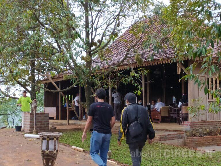 Sensasi Makan Durian Montong Petik Langsung dari Pohon di Kopi Montong